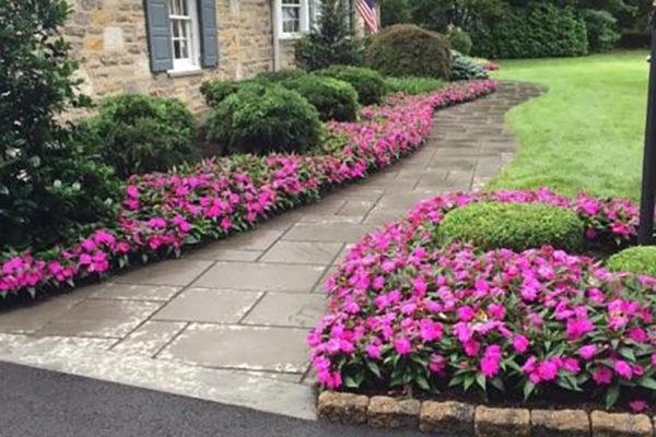 Flower Boarder walkway